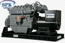 Газовый генератор TJ460PE-NG5S Teksan